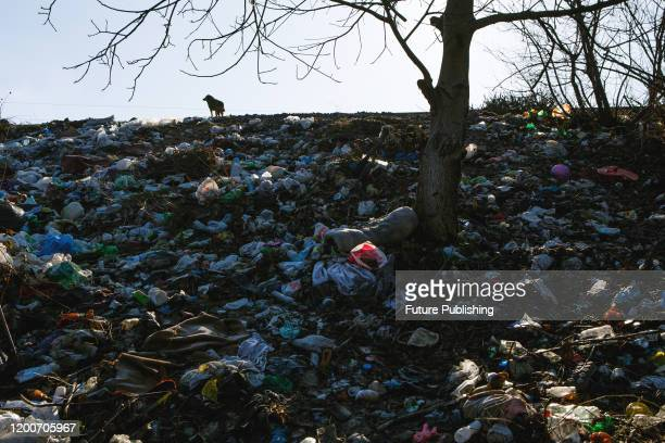 Rubbish covers the ground at an illegal dumping site on the bank of the Uzh River in Radvanka neighbourhood, Uzhhorod, Zakarpattia Region, western...