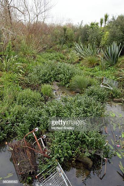 Rubbish including shopping carts clog up a water way on the side af the raod along Te Irirangi Road in the Howick Botany Downs suburb of east...