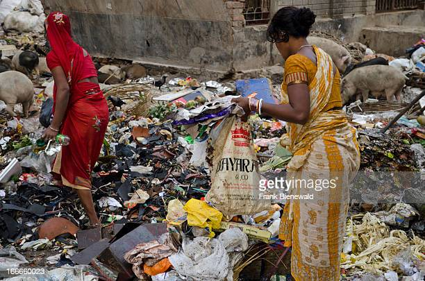 Rubbish is a huge problem in overpopulated Kolkata Low caste ladie sorting out the recyclable parts