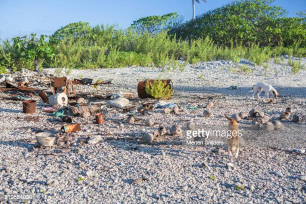 Rubble and rusted barrels washed ashore on gravel beach