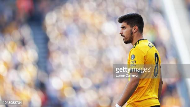 Ruben Neves of Wolverhampton Wanderers during the Premier League match between Wolverhampton Wanderers and Southampton FC at Molineux on September 29...