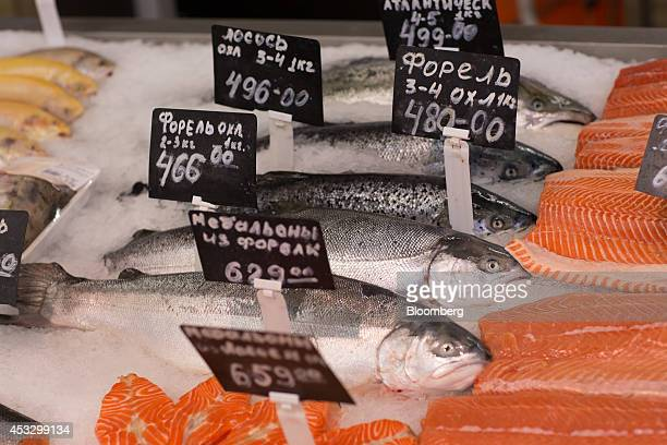 Ruble price signs sit on cuts of fresh imported Norwegian salmon on the fishmonger's counter inside an OAO Magnit hypermarket in Krasnodar Russia on...