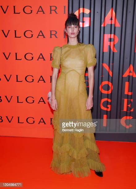Ruby Aldridge attends the Bvlgari Bzero1 Rock collection event at Duggal Greenhouse on February 06 2020 in Brooklyn New York