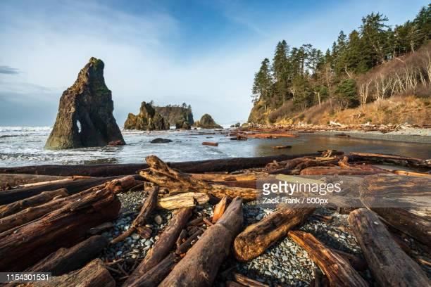 ruby beach in olympic national park - washington state imagens e fotografias de stock