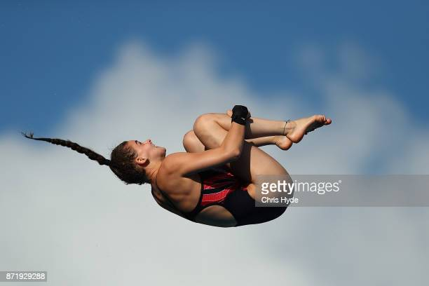 Ruby Bower of Great Britain dives in the Womens 10m platform semi final during the FINA Gold Coast Diving Grand Prix at the Gold Coast Aquatic Centre...
