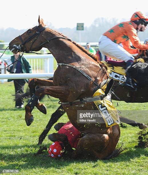 Ruby Walsh and Abbyssial fall in the JCB Triumph Hurdle during the Cheltenham Festival at Cheltenham Racecourse on March 14, 2014 in Cheltenham,...