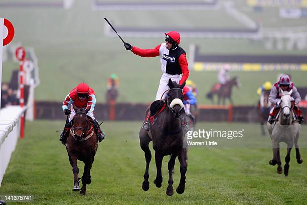 Ruby Walsh celebrates ridding Big Bucks to victory in the Ladbrokes World Hurdle Race at Cheltenham Racecourse on March 15, 2012 in Cheltenham,...