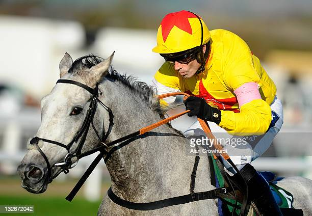 Ruby Walsh riding Al Ferof clear the last to win The Independent Newspaper Novices' Steeple Chase at Cheltenham racecourse on November 13, 2011 in...