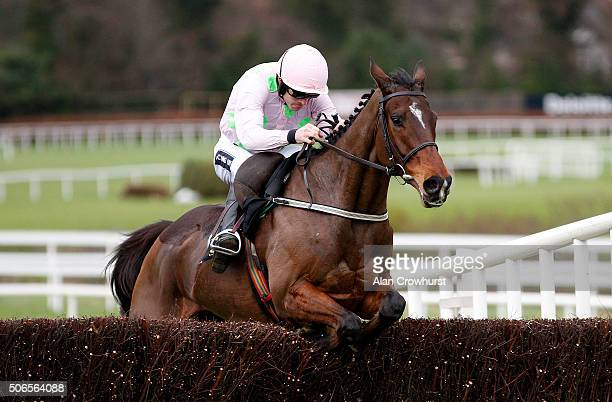Ruby Walsh riding Douvan clear the last to win The Frank Wards Solicitors Arkle Steeple Chase at Leopardstown racecourse on January 24 2016 in Dublin...