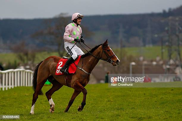 Ruby Walsh riding Faugheen after winning The BHP Insurance Irish Champion Hurdle Race at Leopardstown racecourse on January 24 2016 in Dublin Ireland