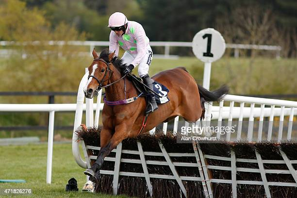 Ruby Walsh riding Faugheen clear the first flight of hurdles before winning The Queally Group Celebrating 35 Years In Naas Punchestown Champion...
