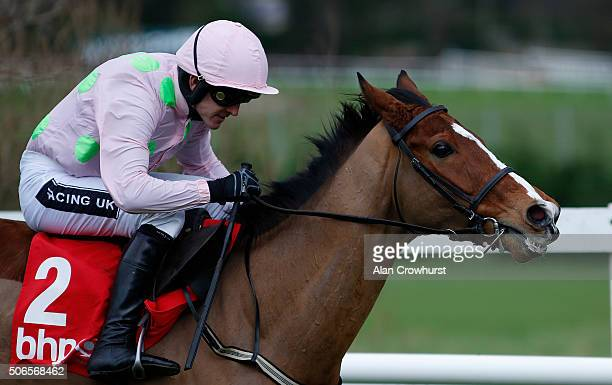 Ruby Walsh riding Faugheen clear the last to win The BHP Insurance Irish Champion Hurdle Race at Leopardstown racecourse on January 24 2016 in Dublin...