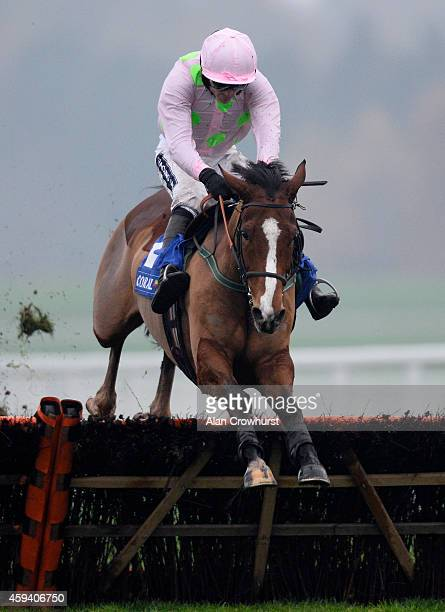 Ruby Walsh riding Faugheen clear the last to win The Coral Hurdle Race at Ascot racecourse on November 22 2014 in Ascot England