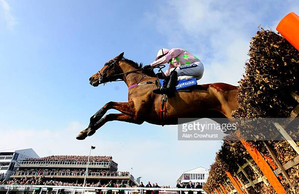 Ruby Walsh riding Faugheen clear the last to win The Neptune Investment Mamagement Novices' Hurdle Race at Cheltenham racecourse on March 12 2014 in...