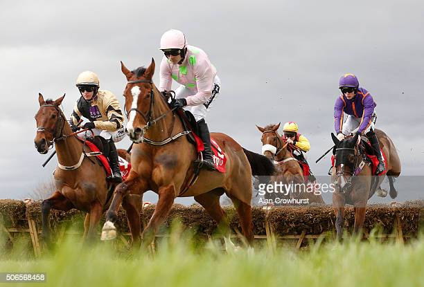 Ruby Walsh riding Faugheen lead all the way to win The BHP Insurance Irish Champion Hurdle Race at Leopardstown racecourse on January 24 2016 in...