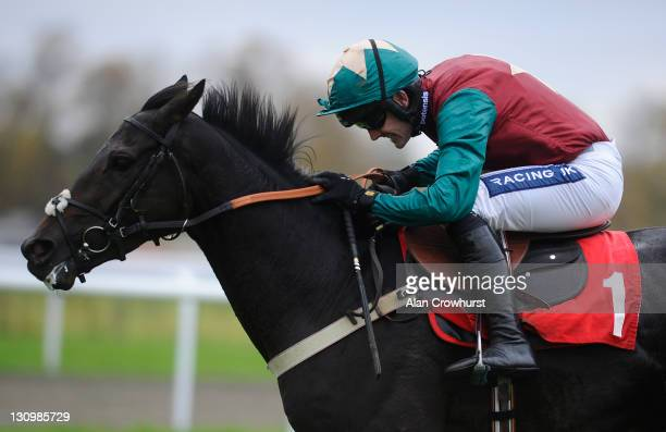 Ruby Walsh riding King Of The Night clear the last to win The Pertemps Handicap Hurdle Race at Kempton racecourse on October 31, 2011 in Sunbury,...