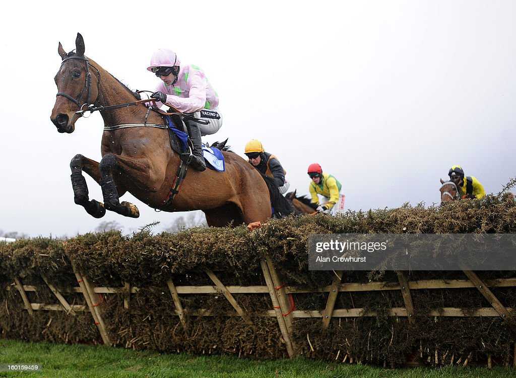 Ruby Walsh riding Pont Alexandre on their way to winning The Synergy Security Solutions Novice Hurdle at Leopardstown racecourse on January 27, 2013 in Dublin, Ireland.