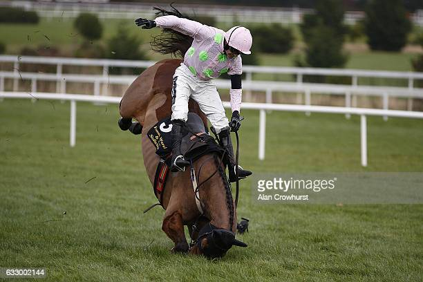 Ruby Walsh riding Royal Caviar fall at the last when leading in The Frank Ward Solicitors Arkle Novice Steeplechase at Leopardstown racecourse on...
