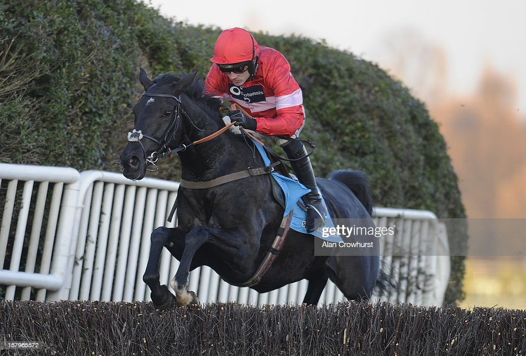 Ruby Walsh riding Sanctuaire at Sandown racecourse on December 08, 2012 in Esher, England.