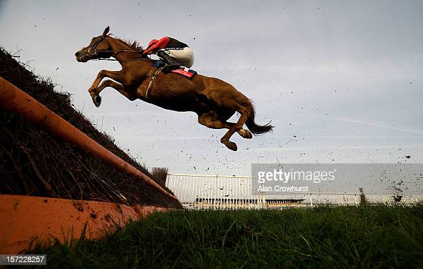 Ruby Walsh riding There's No Panic take a huge leap at a fence during the Fuller's Pride Novices' Steeple Chase at Newbury racecourse on November 30...