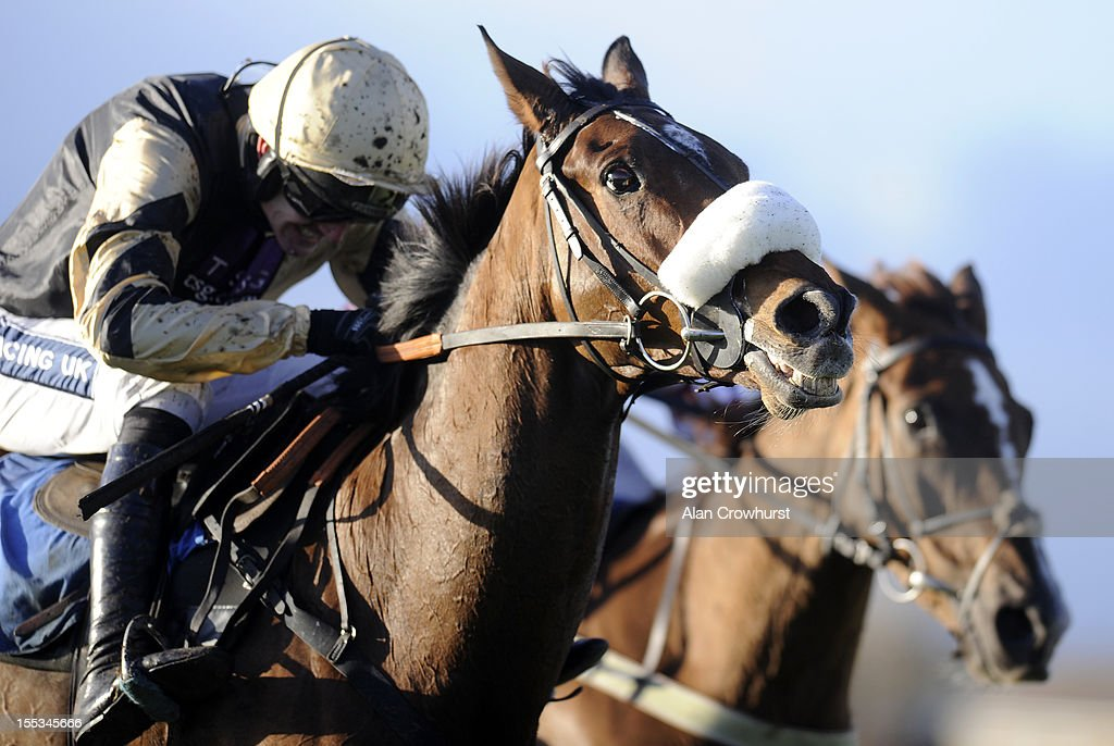 Wetherby Races : News Photo