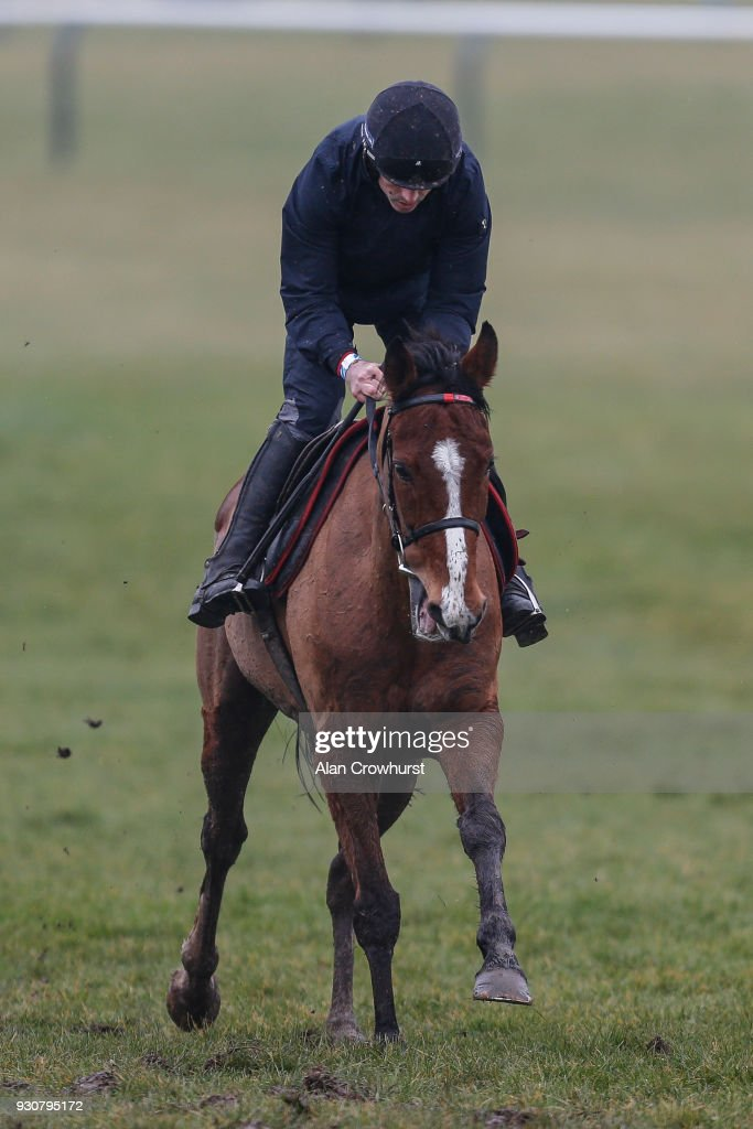 Ruby Walsh ridng Faugheen on the gallops at Cheltenham racecourse on March 12, 2018 in Cheltenham, England.