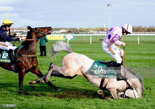 Ruby Walsh takes a fall from Sire Collonges during The Silver Cross Handicap Hurdle Race at Aintree racecourse on April 07 2011 in Liverpool England