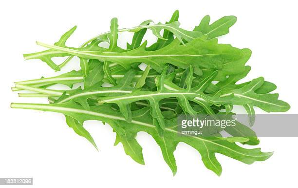 Rucola leaves isolated on white