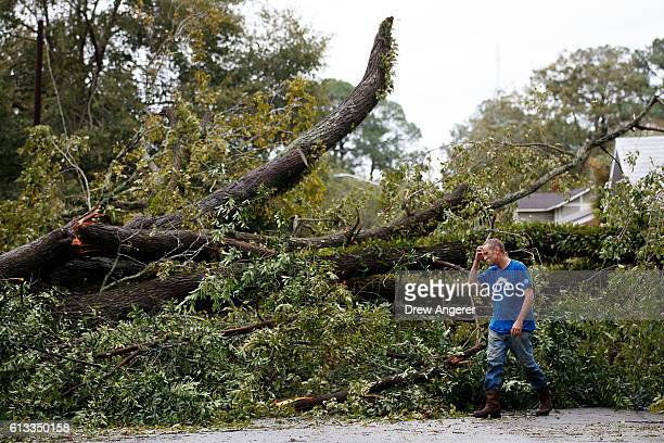 Rudd Long examines an elm tree that fell in front of his home October 8 2016 in Savannah Georgia Across the Southeast Over 14 million people have...