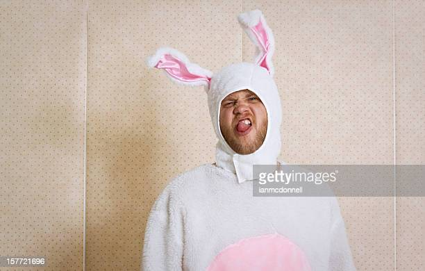 rude bunny - easter bunny stock pictures, royalty-free photos & images