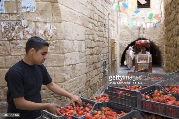 Ruelles du souk de la vieille ville de Saida Ruelles du souk de la vieille ville de Saida