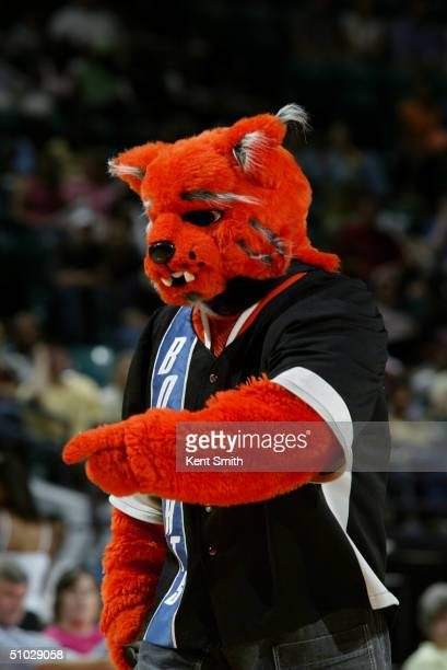 Rufus Lynx mascot of the Charlotte Bobcats is at the game between the Charlotte Sting and the Indiana Fever at the Charlotte Coliseum on June 26 2004...