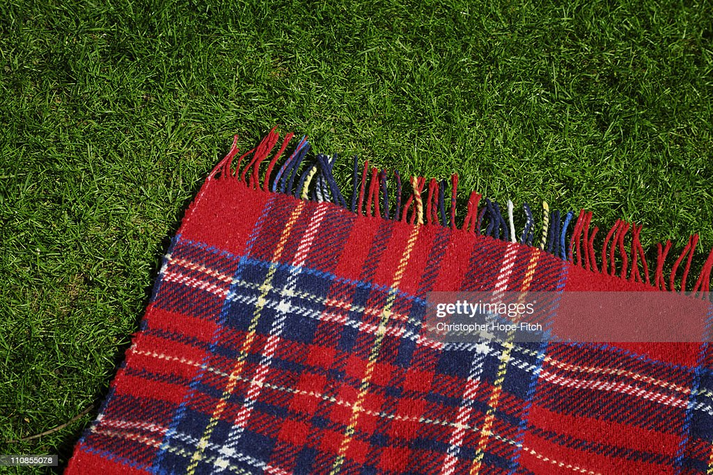 Rug on lawn : Stock Photo