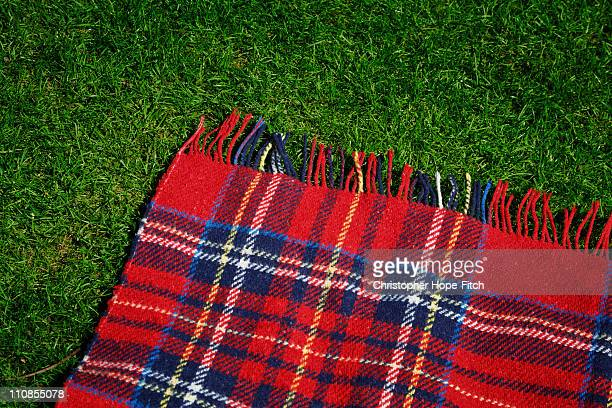 rug on lawn - tartan stock pictures, royalty-free photos & images