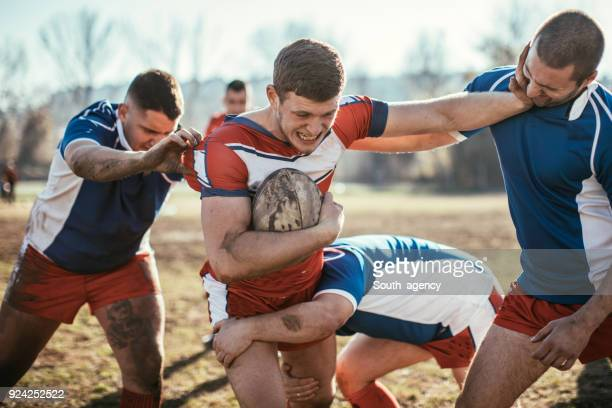 rugby action - rugby union stock pictures, royalty-free photos & images