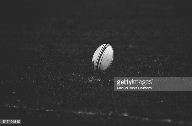 rugby ball - rugby union stock pictures, royalty-free photos & images