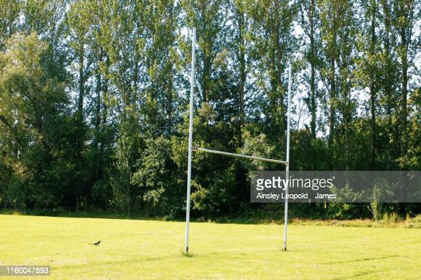 rugby in the afternoon - england rugby squad stock pictures, royalty-free photos & images