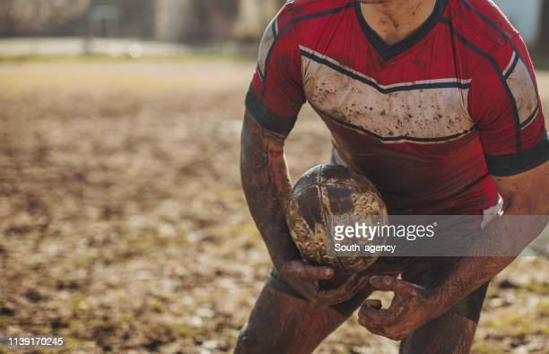 rugby player standing on a playing field with ball - serbia stock pictures, royalty-free photos & images