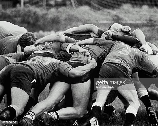 Rugby players in action, rear view (B&W)