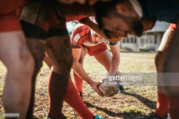 rugby players in game - scrum stock pictures, royalty-free photos & images