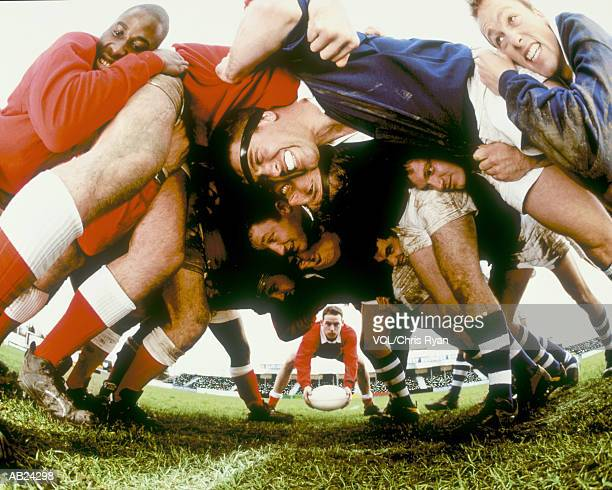 rugby players in scrum - scrum stock pictures, royalty-free photos & images