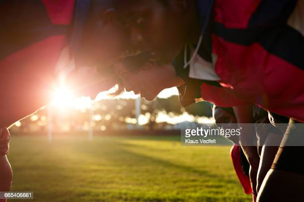 rugby players standing head to head on field - rugby team stock pictures, royalty-free photos & images