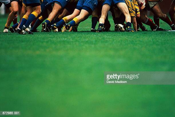 rugby union, players in scrum, focus on legs - rugby stock-fotos und bilder