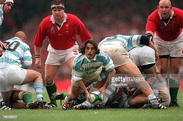 Rugby Union World Cup Cardiff 1st October Wales 23 v Argentina 18 Argentine scrum half Agustin Pichot prepares to throw the ball out from the base of...