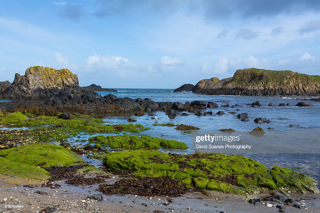 A rugged coastal landscape at Ballintoy harbour along the Causeway Coast in Antrim, Northern Ireland : Stock Photo