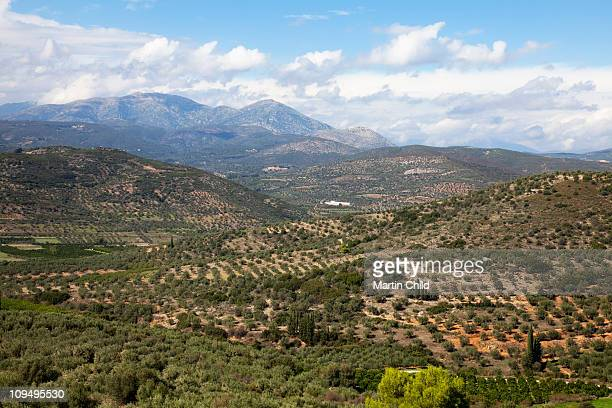 rugged landscape near Mycenae