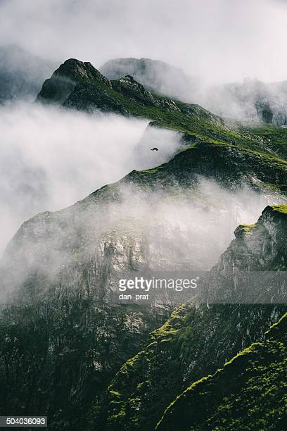 Robuste Berge