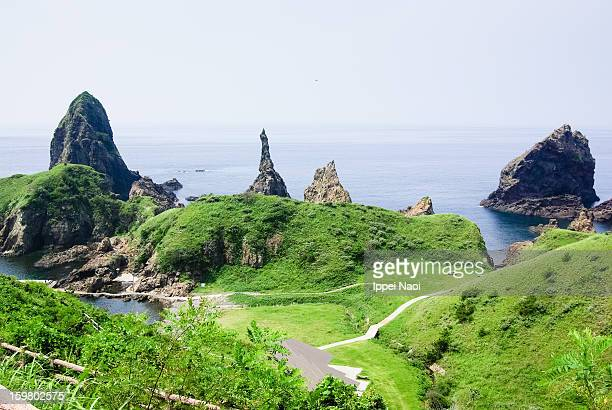 Rugged rocky coastline covered by grass, Japan