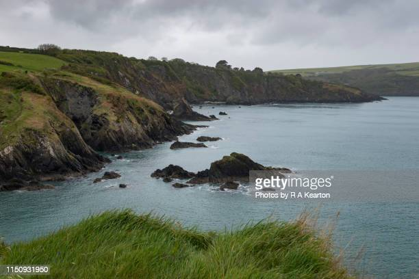 rugged scenery in the pembrokeshire coast national park, wales, uk - newport wales stock pictures, royalty-free photos & images