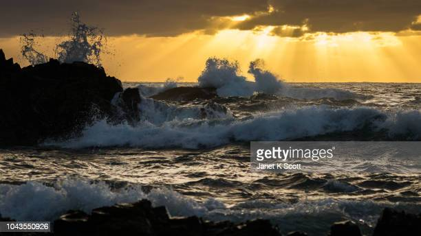 rugged surf at sunrise - janet scott stock pictures, royalty-free photos & images